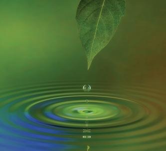{3362,water-ripple.jpg