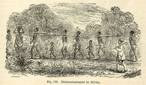 300px-AfricanSlavesTransport.jpg